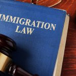 Benefits of hiring a professional immigration agent